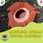 Rafflesia Bukan Bunga Bangkai | Ft. Dra. Sofi Mursidawati, M.Sc